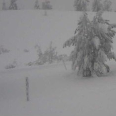 Snødybde 16.01.18